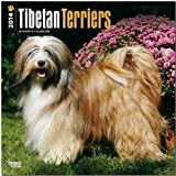 Tibetan Terriers 2014 Wall BrownTrout