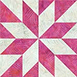 AccuQuilt Finished Square Lemoyne Star Go! Fabric Cutting Dies, 9""
