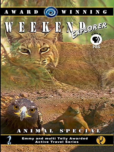 Weekend Explorer - Animal Special
