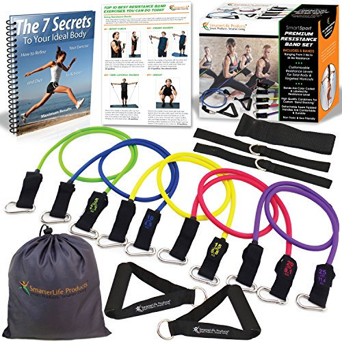 premium-resistance-bands-set-lose-body-fat-increase-muscle-strength-set-includes-5-heavy-duty-exerci