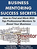Business Mentoring Success Secrets:  How to Find and Work With Top Professional Mentors To Boost Your Business (Business Matters)