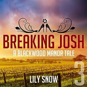 Breaking Josh 3 Audiobook