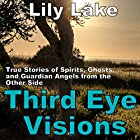 Third Eye Visions: True Stories of Spirits, Ghosts and Guardian Angels from the Other Side Hörbuch von Lily Lake Gesprochen von: Pete Beretta