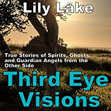 Third Eye Visions: True Stories of Spirits, Ghosts and Guardian Angels from the Other Side Audiobook by Lily Lake Narrated by Pete Beretta