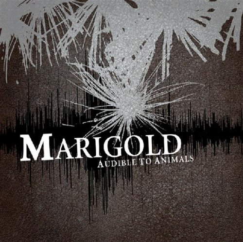 Audible to Animals, Marigold