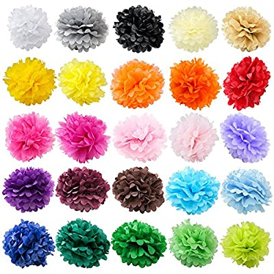 WYZworks Set of 6 Tissue Pom Poms Flower Party Decorations for Weddings, Birthday Parties, Bridal, Baby Showers and Nursery Décor Party Wedding