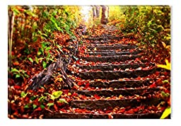 Startonight Wall Art Canvas Colored Red Stairs in the Forest, Nature Design for Home Decor, Dual View Surprise Artwork Modern Framed Ready to Hang Wall Art 23.62 X 35.43 Inch Original Art