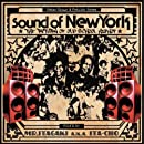 Sound of New York-The Return of Old School HipHop