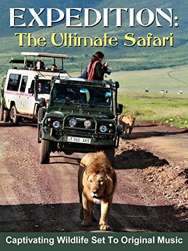 Expedition: The Ultimate Safari