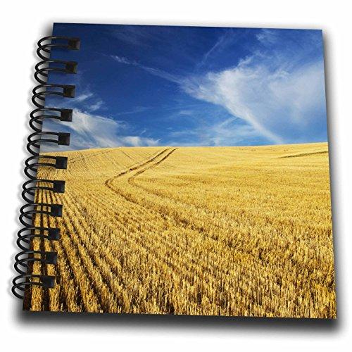 Danita Delimont - Farms - Farm Fields, Harvest Wheat, Palouse, Washington, USA - US48 TEG0425 - Terry Eggers - Mini Notepad 4 x 4 inch (db_148727_3)