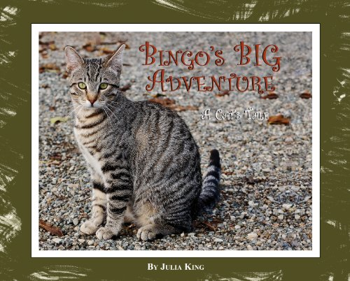 Bingo's Big Adventure (Mom's Choice Awards Winner 2011)