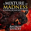 A Mixture of Madness: The Bow of Heaven, Book 2 Audiobook by Andrew Levkoff Narrated by Andrew Levkoff