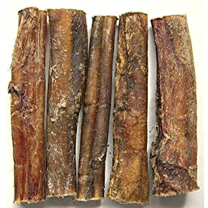 50 x thick bulls pizzles pizzle bully sticks dog treat chew pet supplies. Black Bedroom Furniture Sets. Home Design Ideas