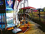 Abandoned Takakanonuma Amusement Park in Japan (Photo Gallery: (Photo Books,Photo Album,Photo Display,Photo Journal,Photo Story,Photo Traveler,Travel Books,Travel Photos)