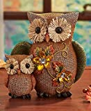 Fall Jeweled Shelf Table Top Sitter Thanksgiving Autumn Home Accent Decoration (Owls) by KNL Store