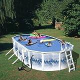 Splash Pools 24-Feet by 12-Feet by 48-Inch Complete Famliy Pool-Package
