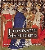 Illuminated Manuscripts: Treasures of the Pierpont Morgan Library New York (Tiny Folio)
