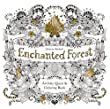 Enchanted Forest: An Inky Quest & Coloring Book from Laurence King Publishing
