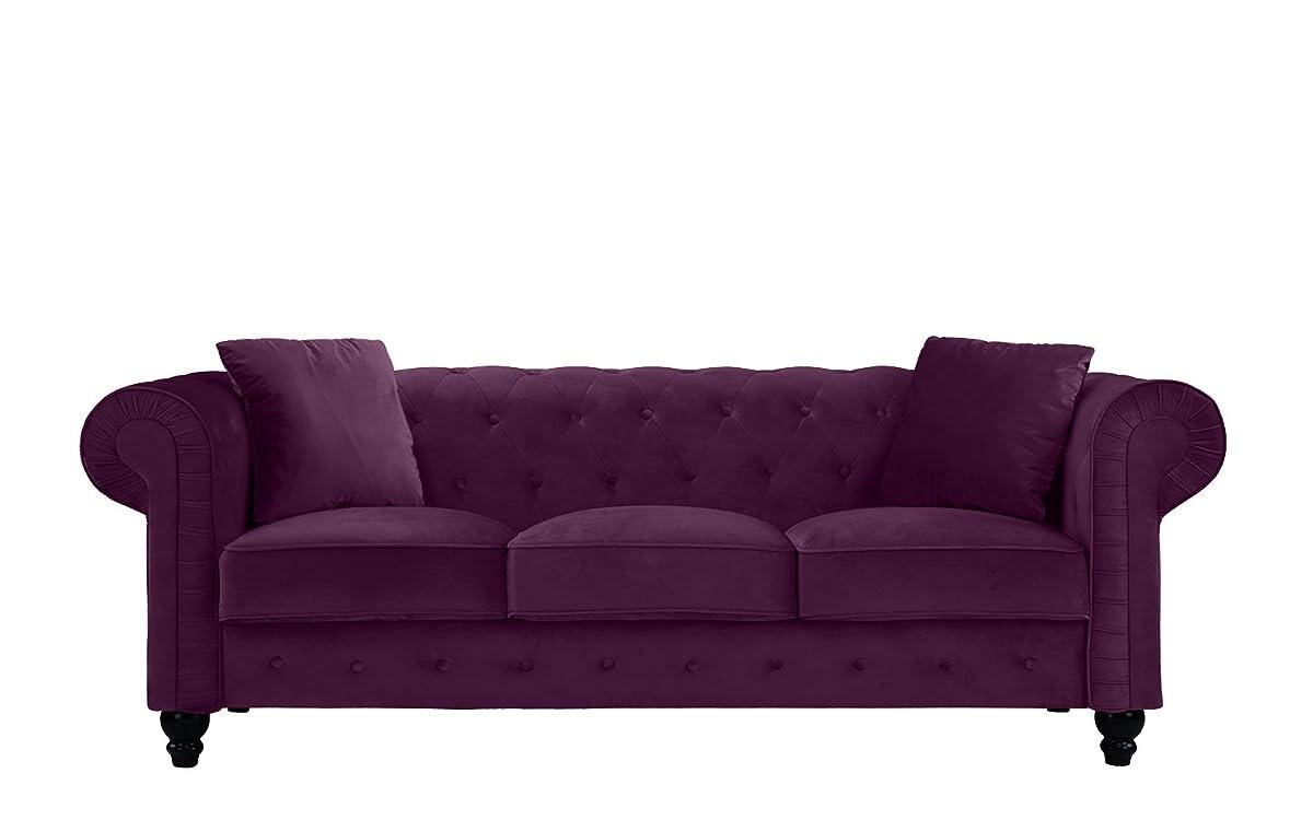 Divano Roma Furniture Classic Velvet Scroll Arm Tufted Button Chesterfield Sofa (Purple)