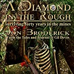 A Diamond in the Rough: Surviving Forty Years in the Diamond Mines | Jon Broderick