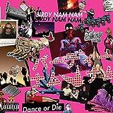 vignette de 'Dance or die (Birdy Nam Nam)'