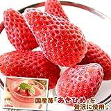 静岡県産 ひんやりいちご(冷凍苺)1kg入 ランキングお取り寄せ
