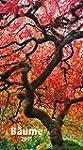B�ume 2015 - Trees - Bildkalender (33...