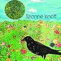 Knott, lizanne - Excellent Day [Audio CD]<br>$480.00