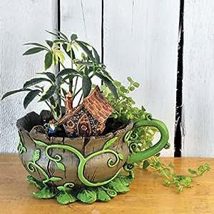 georgetown home garden fiddlehead fairy garden woodland vines tea cup planter