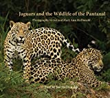 img - for Jaguars and the Wildlife of the Pantanal book / textbook / text book