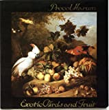Exotic Birds & Fruit by Friday Music