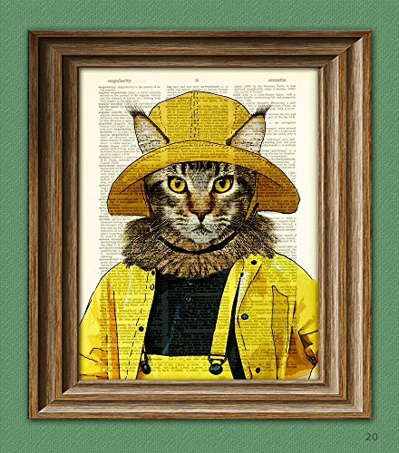 maine-coon-cat-hunts-for-lobstah-in-the-yellow-raincoat-illustration-beautifully-upcycled-dictionary