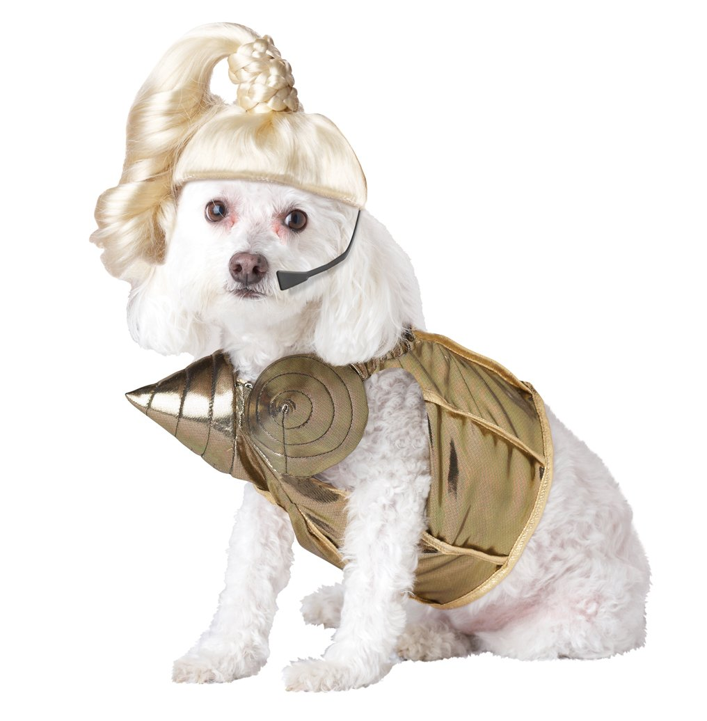 Pet Halloween Costumes For Small Dogs Dog Costume Small Gold