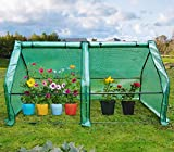 """Quictent Upgraded Large Door Portable Mini Greenhouse Green Garden Hot House Grow Tent More Size (71""""WX 36""""D X 36""""H PE Cover)"""