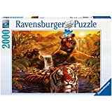 Ravensburger 16646 Tigri- Puzzle da 2.000 pezzi