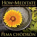 How to Meditate with Pema Chodron Speech by Pema Chodron Narrated by Pema Chodron