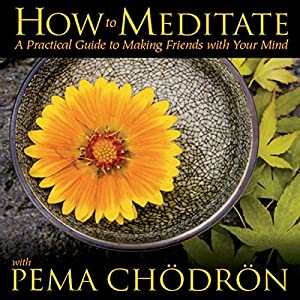 How to Meditate with Pema Chodron Speech