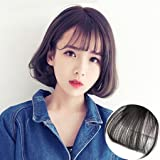 LMHair Clip-in Front Hair Bangs Fake Hair Extension False Hair Piece Clip on Front Bangs for Women (Dark brow)