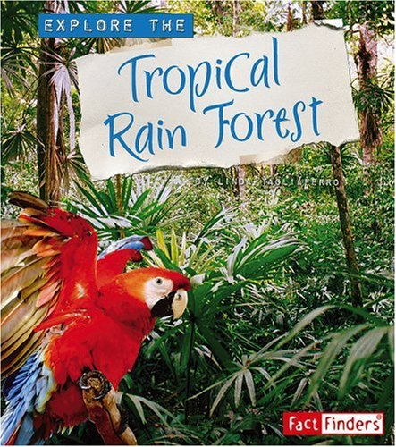 tropical rain forests essay Tropical rainforest – gabon –africa introduction the most dynamic global biome is the tropical rainforest the abundant tree, plant and animal life found in this biome exists because of six key geographical processes.
