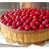 最高級洋菓子 フランスの銘菓 ヴァルトベーレ 木苺チョコレートケーキ 直径20cm