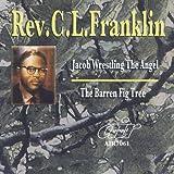 Jacob Wrestling the Angel - The Baren Fig Tree