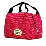 Portable Thermal Lunch Box Bag Cooler Picnic Handbag Travel Carry Bag