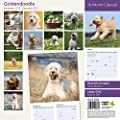 Goldendoodle 2015 Wall Calendar