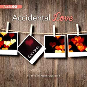 Accidental Love Audiobook
