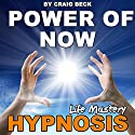 Power of Now: Life Mastery Hypnosis  by Craig Beck Narrated by Craig Beck