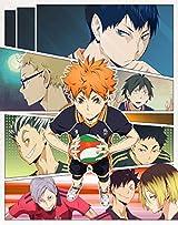 「ハイキュー!! 2期」BD全9巻予約開始。各巻にドラマCD同梱
