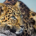 Wildlife 2015 - Brosch�renkalender (3...