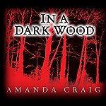 In a Dark Wood   Amanda Craig