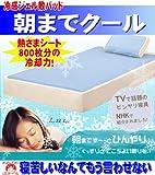 【即納可・2008モデル】20%OFF 「朝までクール」超低反発冷却ジェルパッドシングルサイズ(90×180cm)