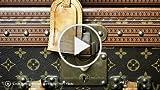 Fashion Designer Louis Vuitton